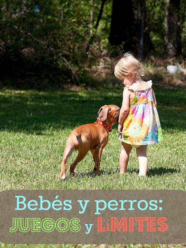 Bebés y perros- juegos y límites