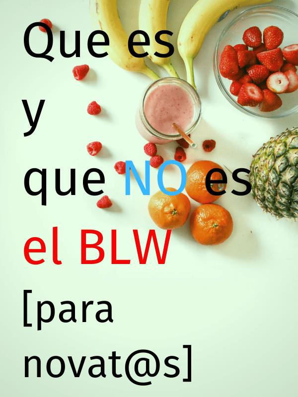Que es el BLW y que NO es para novatos