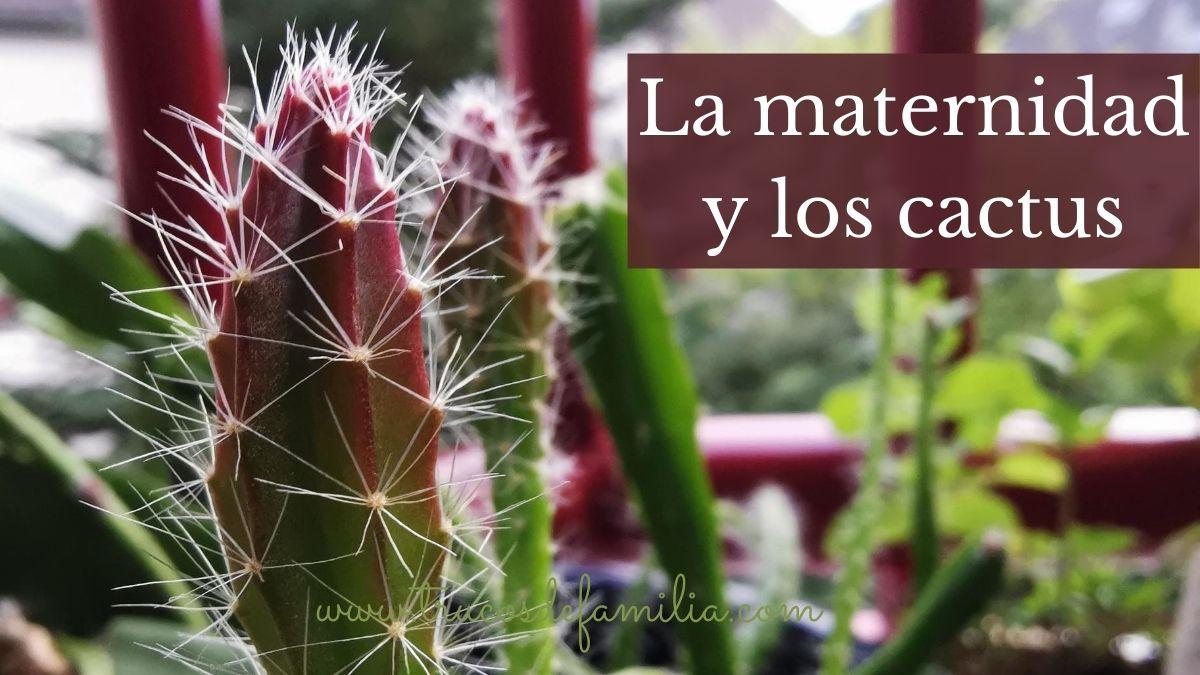 La maternidad y los cactus